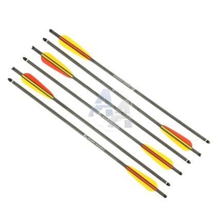 """6 traits en carbone Ek Archery 20"""" pointes acier"""