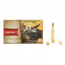 20 munitions Norma .300 WM Plastic Point 180 gr