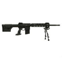 Carabine DPMS LR-SASS, calibre .308 Win